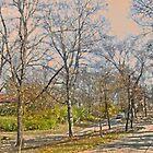Scenic Drive by hickerson