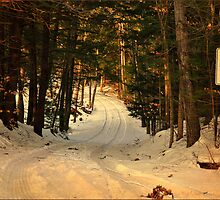 The Road Less Traveled by smalletphotos