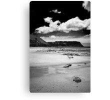 Table Cape, Tasmania Canvas Print