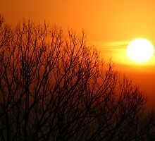 first sunrise by byandby