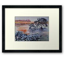 Mangroves Cleveland Bay Brisbane  Framed Print