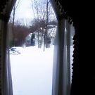 Oh, the weather outside is frightful... by takemeawaycn