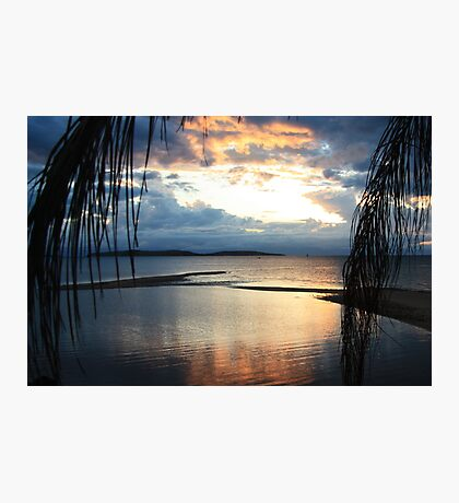 Palm Island dreaming Photographic Print