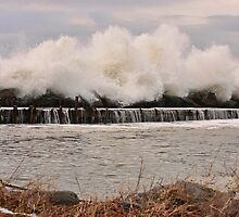 Power of the Sea by Debbie  Roberts