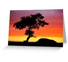 The Tree at Dog Rocks Geelong Victoria Greeting Card
