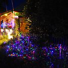 Christmas Lights by Natalie Cooper