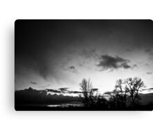 Winter's deathly isolation. Canvas Print