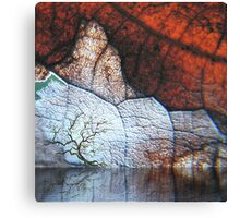 fantasy landscape - natural world gallery Canvas Print