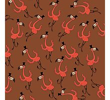 Flamingo Dance Party Photographic Print