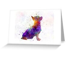 Chihuahua 01 in watercolor Greeting Card