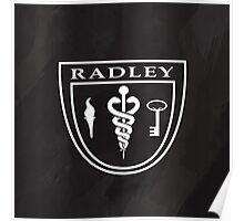 Radley sanitarium Poster
