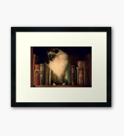 Madame Monkey Framed Print