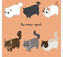 The Meow Squad Photographic Print