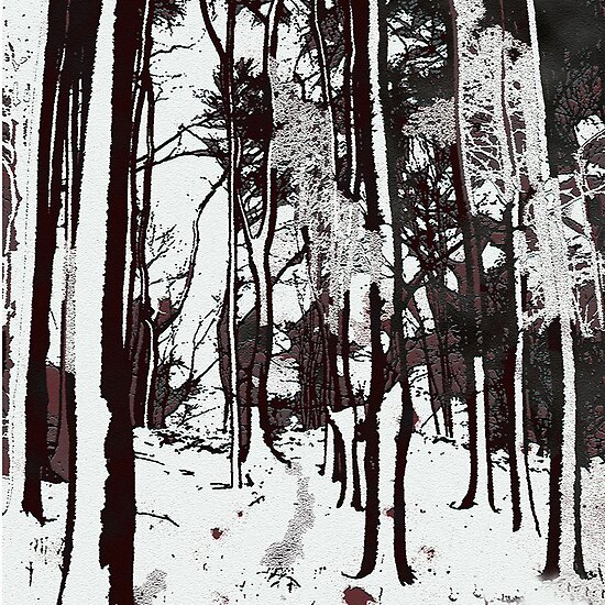 Forest by Marlies Odehnal