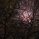 Fireworks 2011 by Toni Holopainen