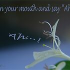 "Open your mouth and say ""Ah..."" by Qnita"