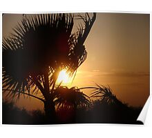 Silhouette Sunset Poster