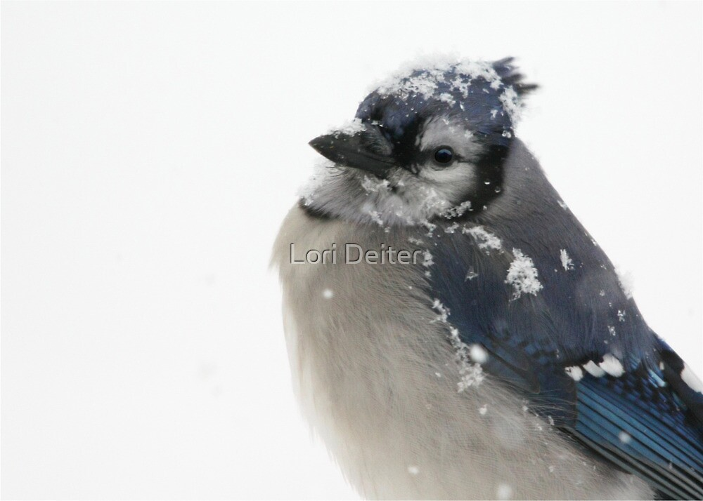 Is it over yet? by Lori Deiter