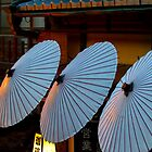 Dusk parasols by Sam Ryan