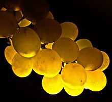 Golden  by Kornrawiee