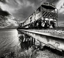 going Loco by jason owens