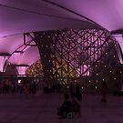 Look, Purple... by Rene Fuller