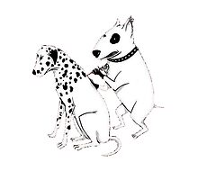Pittbul tattooing Dalmatian Photographic Print