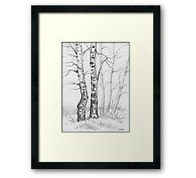 BIRCH TREE 01 Framed Print
