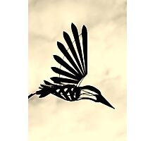 Silhouette of a mechanical bird - Hillier Gardens Photographic Print