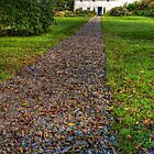 Up the Garden Path. by latitude54photo
