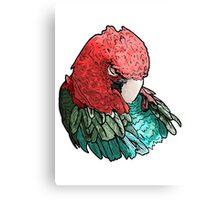 Sleeping Macaw Canvas Print