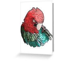 Sleeping Macaw Greeting Card