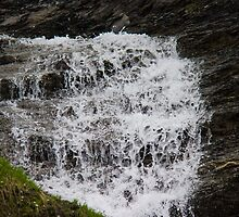 Mountain stream by franceslewis