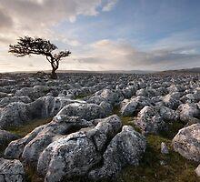 A Yorkshire Dales Limestone Desert by SteveMG