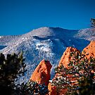 New Year's Day in Colorado by Kevin Williams