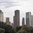 Houston Skyline by SuddenJim