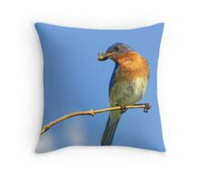 Eastern Bluebird with grasshopper Throw Pillow