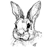 Rupert Rabbit Photographic Print