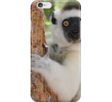 Furry Sifaka iPhone Case/Skin