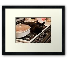 Guess Who's Coming for Dinner !! Framed Print