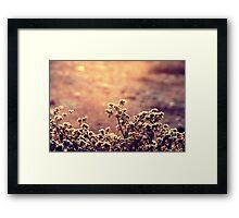 Atardecer color oro Framed Print