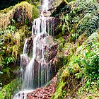 Hestercombe Waterfall by Dean Messenger