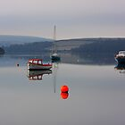 Tranquil reflections at Newbridge, Bowcombe, Kingsbridge by SPPDesign