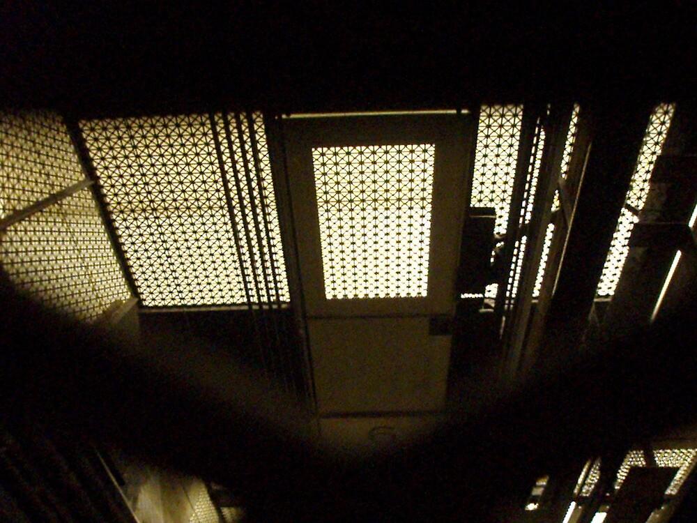 Elevator by reneewhitehouse