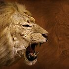 The Roar of the Lion by CarolM