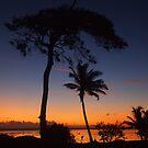 Colours of Fiji by Natasha M