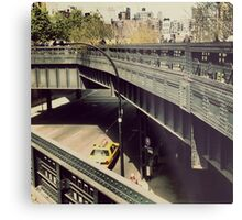 New York High Line. New York City, New York Metal Print