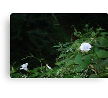 Flowers by the River Canvas Print