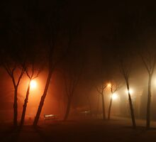 Foggy night by Thalyon