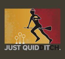 Just Quidditch by Michael Hayslip